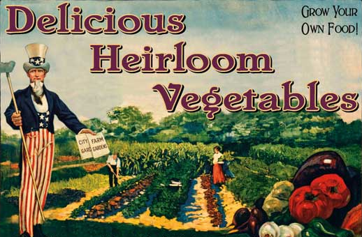 vintage heirloom seeds image