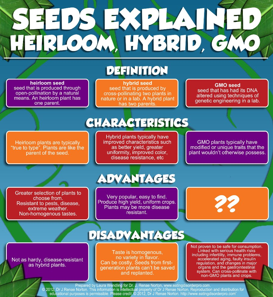 heirloom seeds for preppers infographic